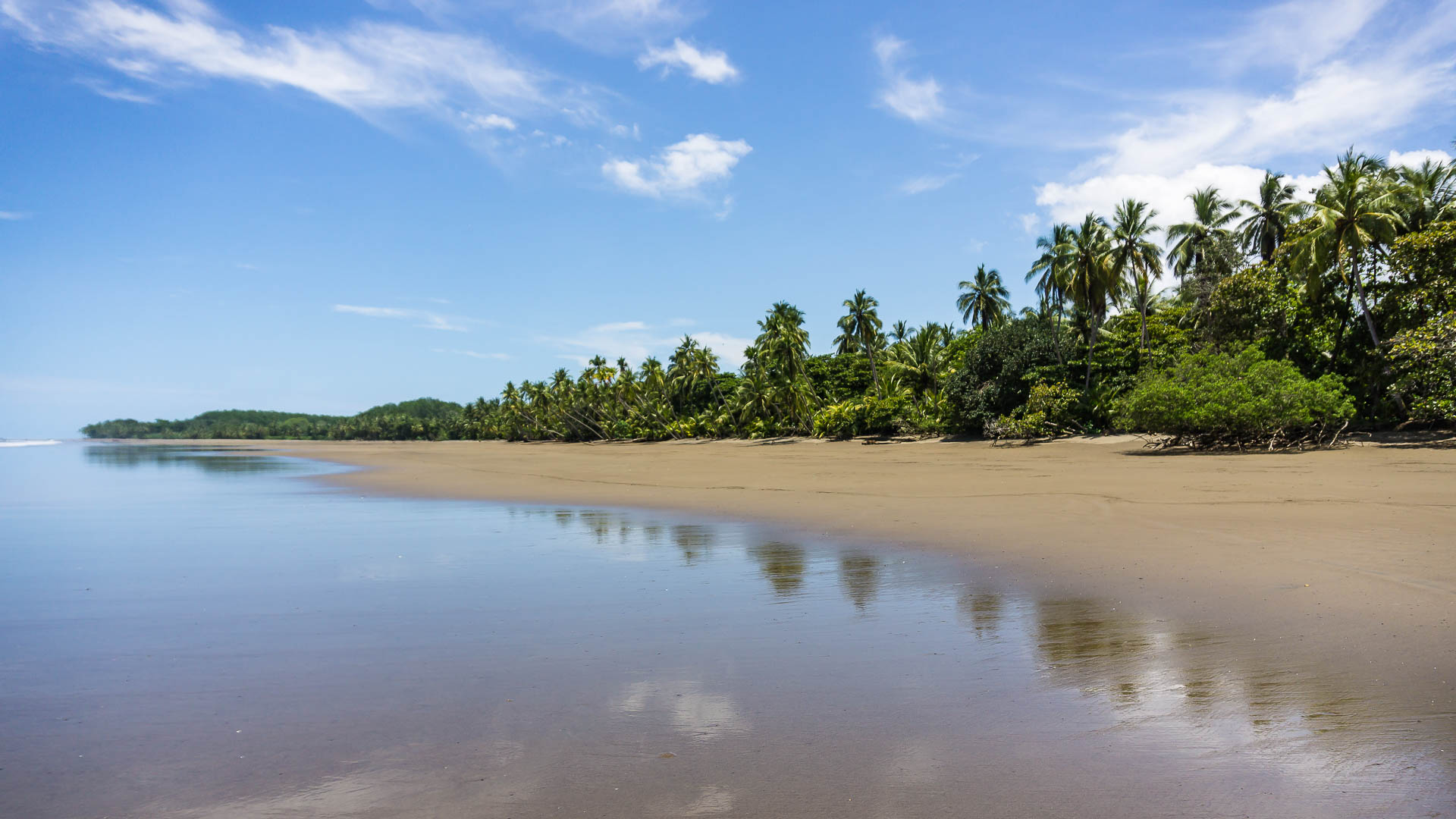 20160822_oliver_staack_costa_rica_DSC0763